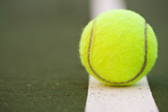 Tenniskugel Lizenzfreie Stockfotos