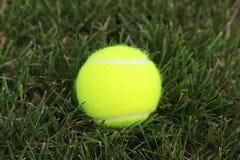 Tenniskugel auf grünem Gras Stockfotos