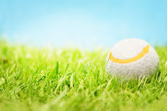 Tenniskugel auf Gras lizenzfreie stockfotos