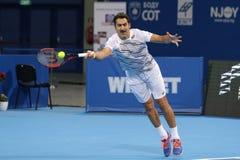 Tennisspelare Nenad Zimonjic Arkivbilder