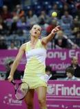 Tennisspelaren Magdalena Rybarikova tjänar som bollen under tennismatch Arkivfoto