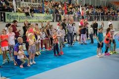 Tennistoernooien voor prijzen van Elena Vesnina Royalty-vrije Stock Afbeelding