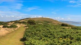 Tennyson Down, l'isola di Wight Immagine Stock Libera da Diritti