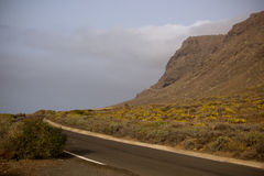 Teno de Tenerife Fotografie Stock