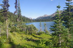 Tenquille lake Royalty Free Stock Photos