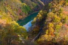 Tenryu flod i höst, i Nagano, Japan Arkivfoton
