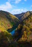 Tenryu flod i höst, i Nagano, Japan Arkivbild