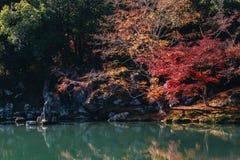 Tenryu-ji świątynia i Sogenchi ogród z jesienią przyprawiamy kolorowego zdjęcie stock