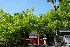 Tenryu ji, świątynia w Kyoto Obrazy Stock