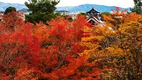 tenryu-ji roof with autumn leaf, Arashiyama Royalty Free Stock Images