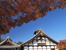 Tenryu-ji Temple in autumn Stock Images