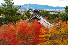 Tenryu-ji temple with autumn leaf color, Arashiyama. Tenryu-ji traditional temple roof against autumn foliage color leaf in Arashiyama, Kyoto, Japan. Here is Stock Photography