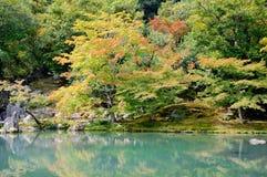 Tenryuji Arashiyama的,日本寺庙庭院Sogenchi池塘  库存照片