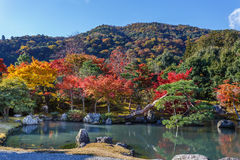 Tenryuji Sogenchi Garden in Kyoto Stock Photography