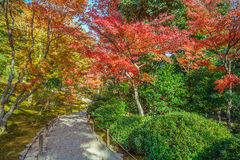 Tenryuji Sogenchi Garden in Kyoto stock images
