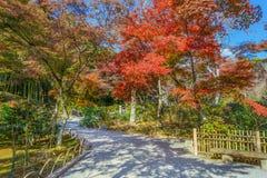 Tenryuji Sogenchi Garden in Kyoto royalty free stock photography