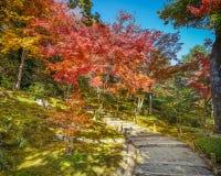 Tenryuji Sogenchi Garden a Royalty Free Stock Image