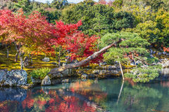 Tenryuji Sogenchi, World Heritage Site in Kyoto Royalty Free Stock Photo