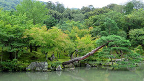 Tenryuji temple garden in Arashiyama, Kyoto Stock Photo