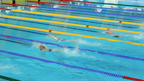 Tense Athletes Women Swimming Competition in Modern Pool stock footage