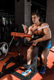 Tense muscles of hands under load. Man doing exercise for biceps in the gym. Stock Photos