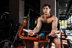 Tense muscles of hands under load. Man doing exercise for biceps in the gym. Royalty Free Stock Photography