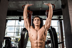 Tense muscles of hands under load. Man doing exercise for biceps in the gym. Royalty Free Stock Image