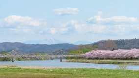 Tenshochi公园看法在岩手县,日本为t是著名的 免版税库存图片