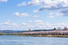 Tenshochi公园看法在岩手县,日本为t是著名的 免版税图库摄影