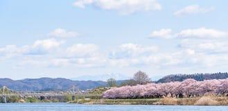 Tenshochi公园看法在岩手县,日本为t是著名的 图库摄影