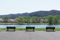 Tenshochi公园看法在岩手县,日本为t是著名的 库存照片