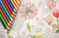 Tensión anti que colorea los lápices coloridos de las flores tropicales Imágenes de archivo libres de regalías
