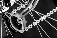 Tensioner gear of a bicycle Stock Image