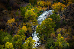 Tensleep Creek Wyoming Fall Colors Stock Photography