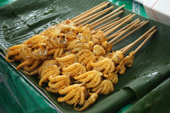 Tentáculos do calamar da grade Foto de Stock Royalty Free