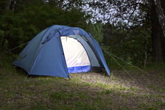 The tent. The camping tent in the evening forest royalty free stock image
