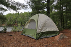 Tent in Algonquin Stock Photography