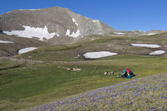 Tent at Asian Caucasus, Azerbaijan Royalty Free Stock Images