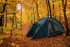 Tent in the autumn forest Stock Photo