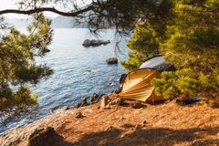 Tent on the beach under the sun in the shade of junipers royalty free stock photography