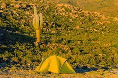 Tent in Bolivia Stock Photography