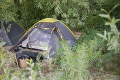 Tent in the Bush. Silver Tent in the Green Bush on a Sunny Summer Day stock images