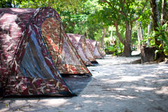 Tent Camp. In tropical forest, Similan islands, Thailand Royalty Free Stock Photos