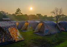 Tent camp in the middle of nature. Stock Photo