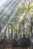 Tent camp in the morning forest. The rays of the sun break through the leaves stock photo
