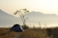 Tent Camp Morning Mountain Cloud Fog Nature Royalty Free Stock Images