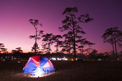Tent camping Stock Images