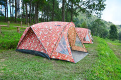 Tent in camping area. Royalty Free Stock Images