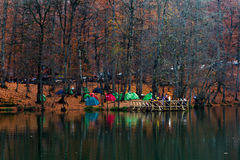 Tent Camping in Bolu. BOLU, TURKEY - NOVEMBER 16, 2014: People camping in forest with fallen leaves, autumn season in Yedigoller. Yedigoller is national park in royalty free stock photos