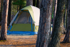 Tent Camping Campsite in the Woods Stock Photography